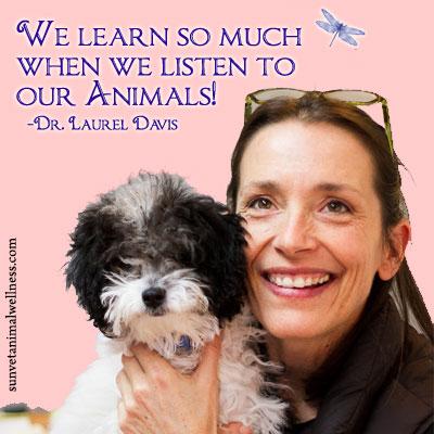 Dr. Laurel Davis listen to our animals