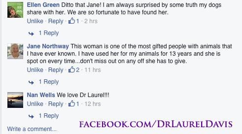 Facebook comments about holistic vet Dr Laurel Davis