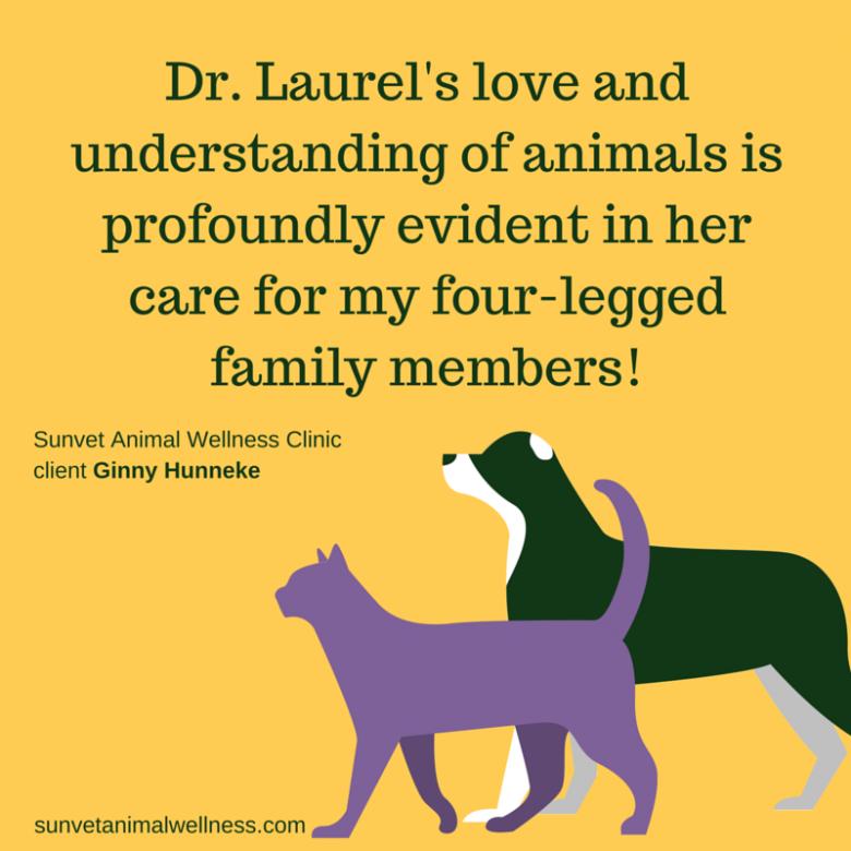 love-understanding-animals-dr-laurel-davis