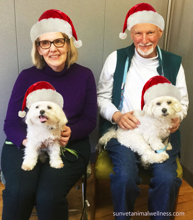 sunvet holiday hours