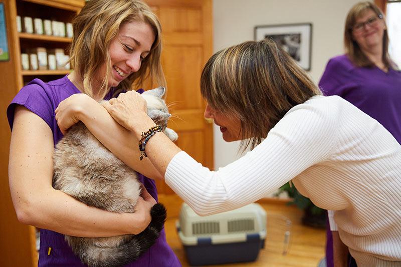 woman veterinarian and staff petting cat