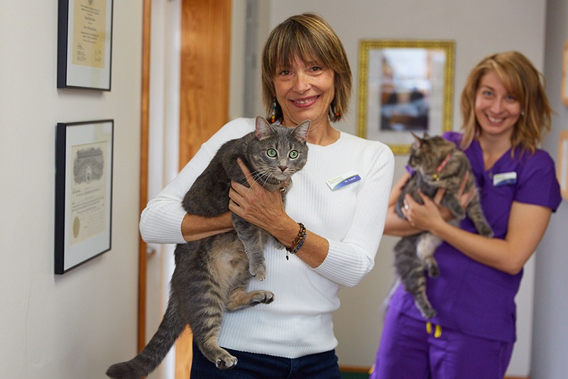 4 Tips for Curbside Veterinary Appointments 1