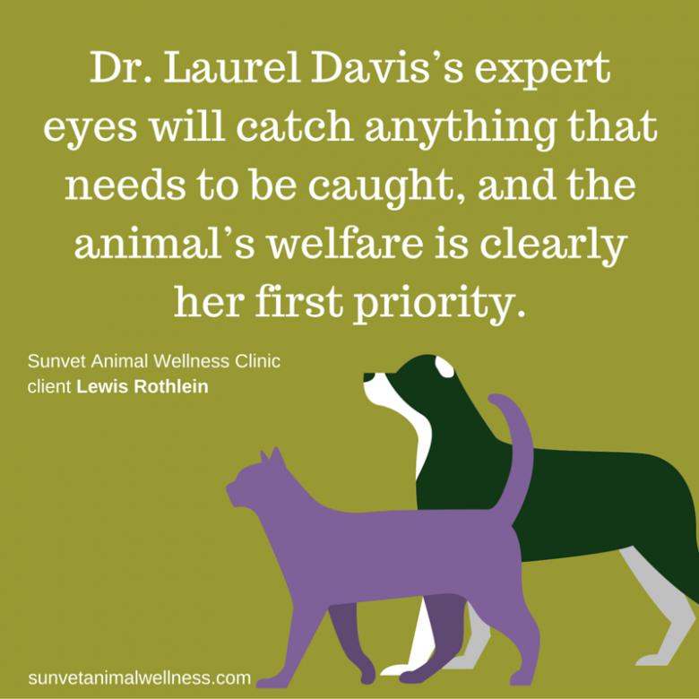 Dr-Laurel-Davis-animal-welfare