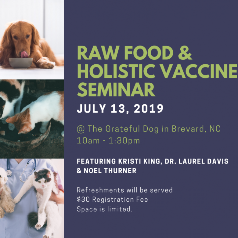 Raw Food & Holistic Vaccines Seminar