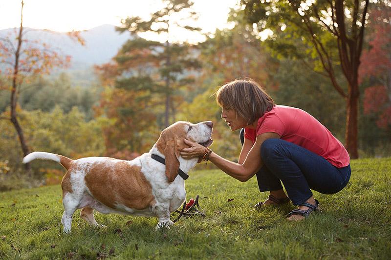 Dr. laurel Davis and a basset hound