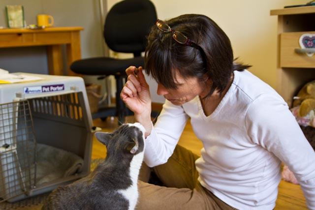 Laurel with cat