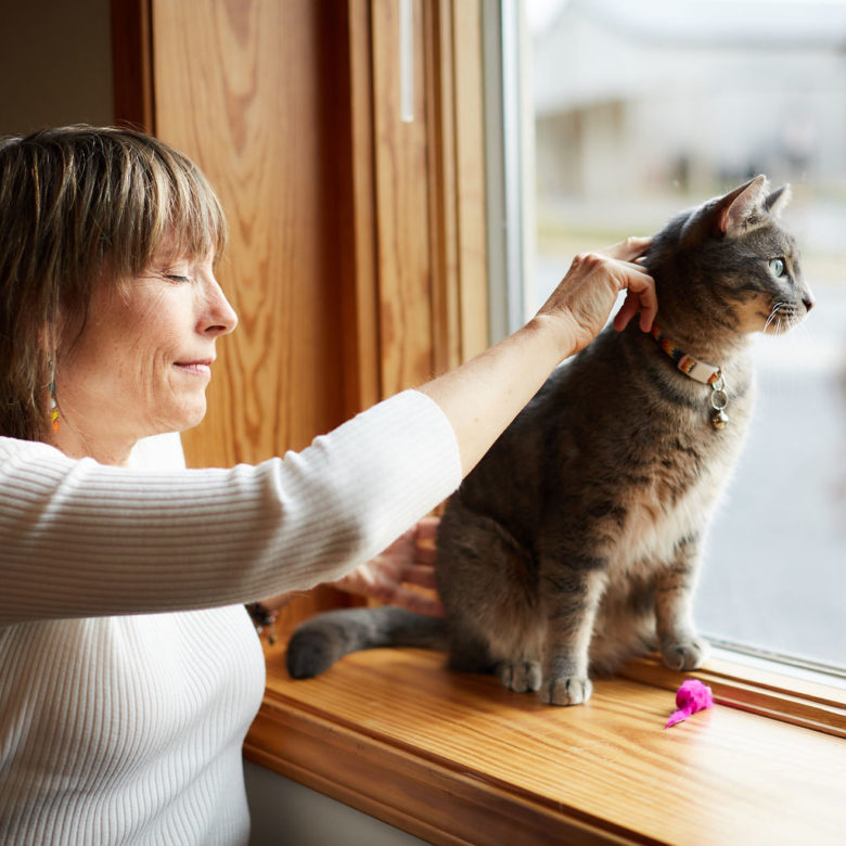 craniosacral therapy treatment on cat