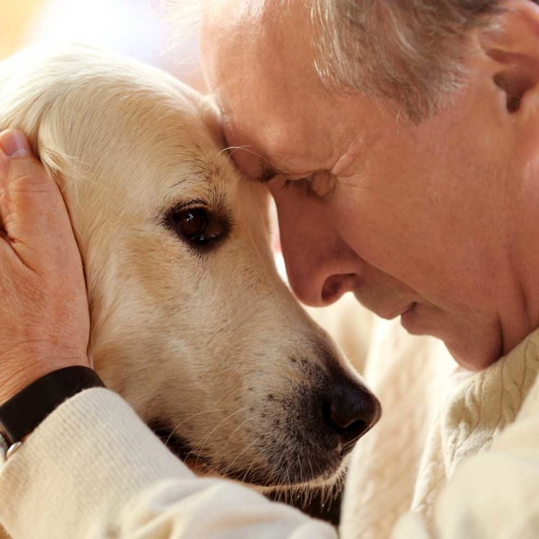 Man with senior dog