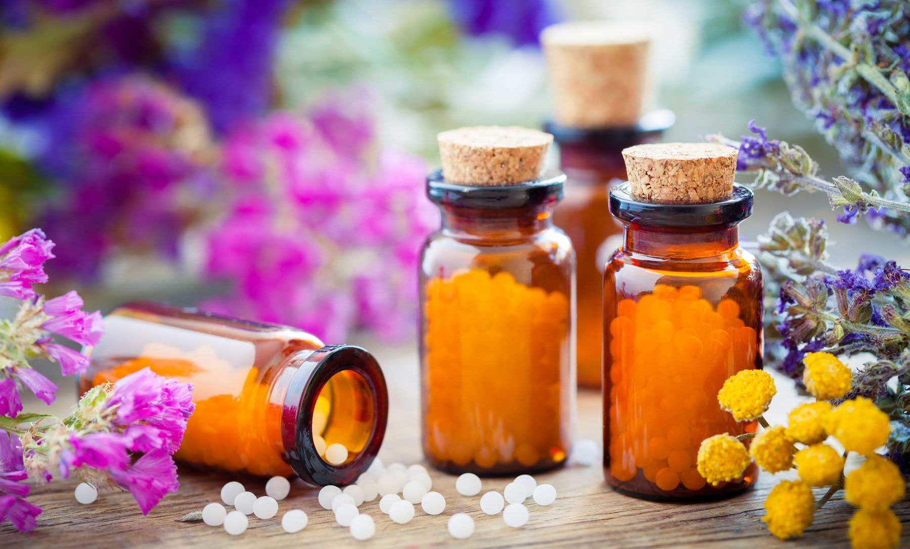 homeopathy for animals