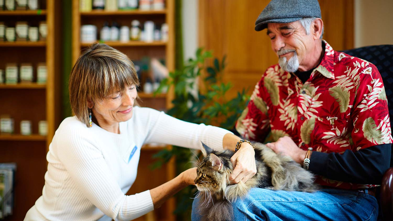 woman-veterinarian-examines-cat