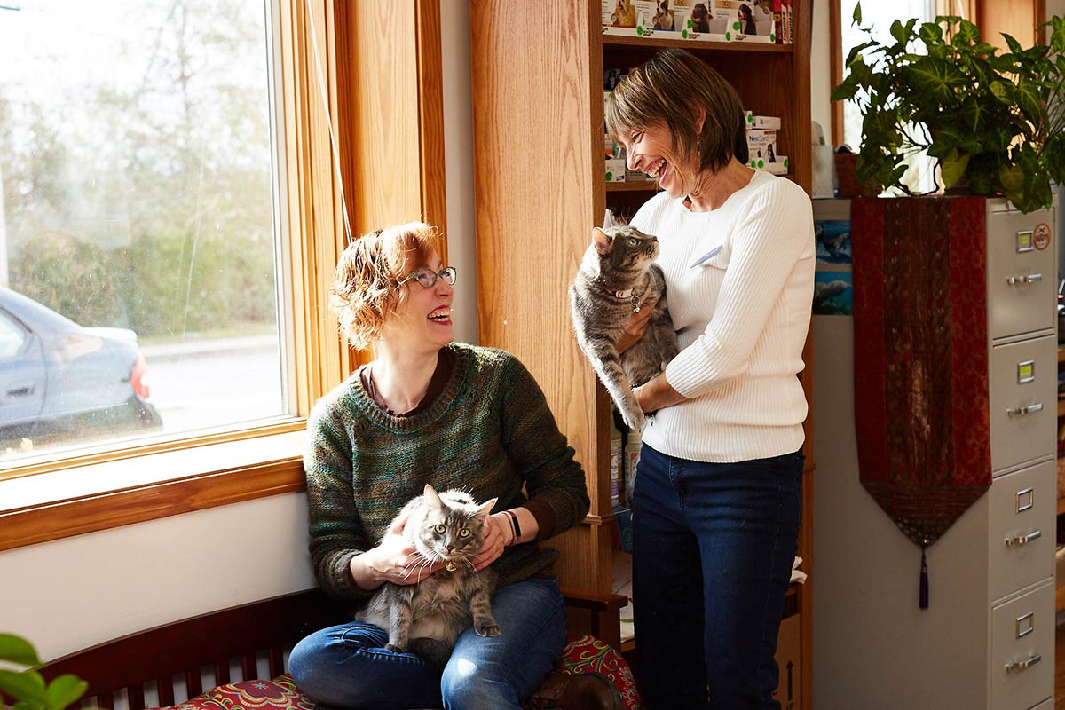 dr-laurel-davis-talks-with-client-and-cats