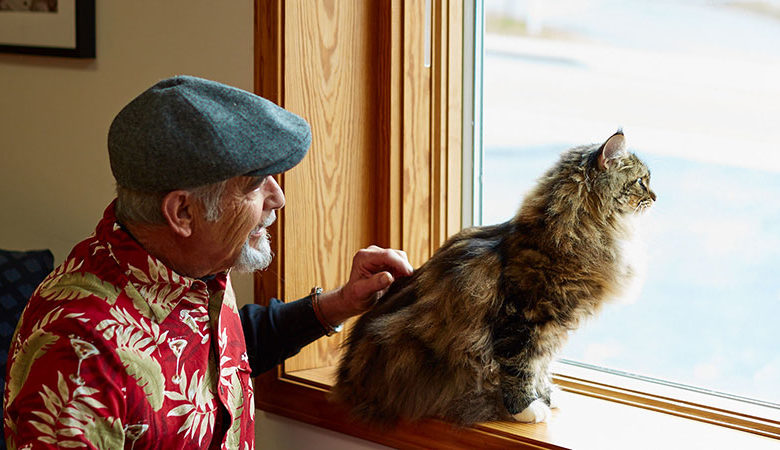 Man and cat look out window calmly