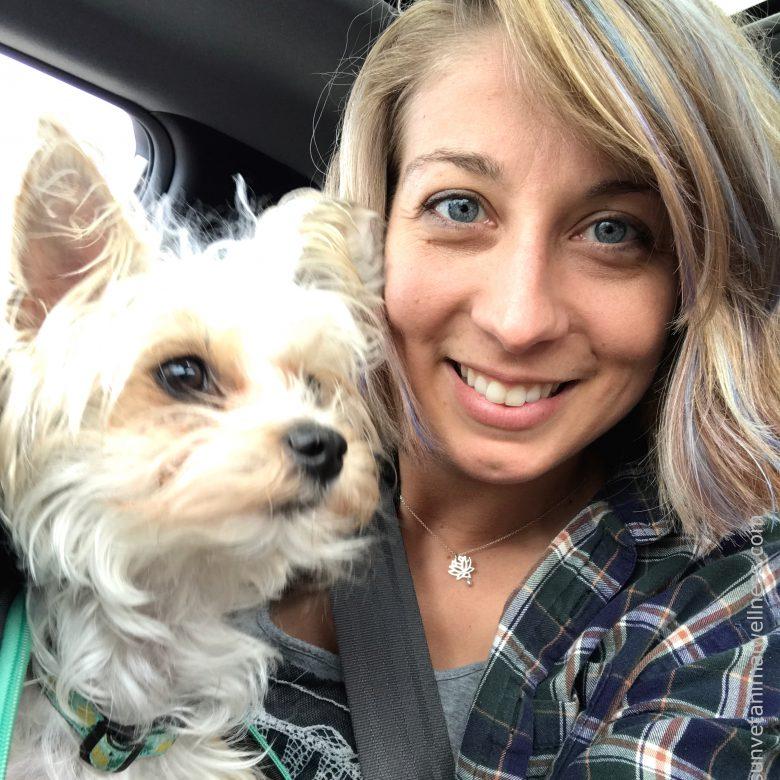 travel with animals