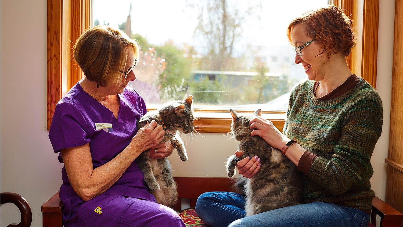 two-women-petting-cats